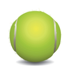Realistic Tennis Ball Isolated on White vector image