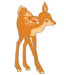 cartoon cute young deer isolated on white vector image