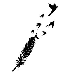 Feather and birds black and white vector