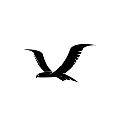 hawk flying bird isolated silhouette vector image