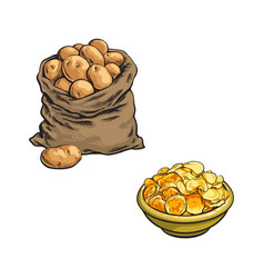 Sketch potato bag chips in plate vector