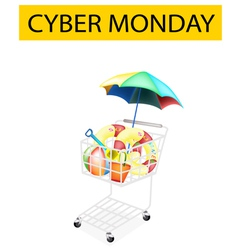 Beach Items in Cyber Monday Shopping Cart vector image