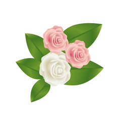 bouquet bud roses with leaves floral design vector image vector image