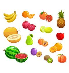 Cartoon fruit natural ripe fresh food icons vector