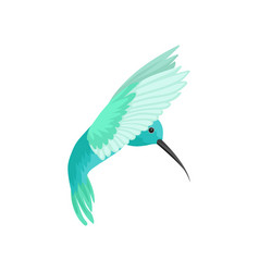 Flat icon of beautiful colibri bird vector