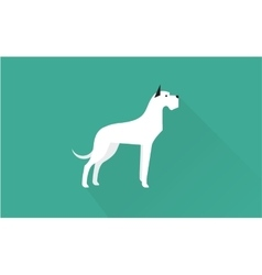 Great dane icon vector