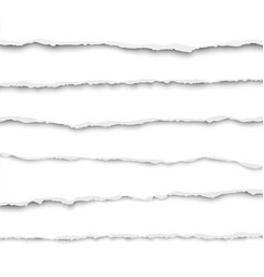 oblong layers torn white paper fragments vector image