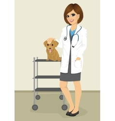 veterinarian woman standing with labrador puppy vector image