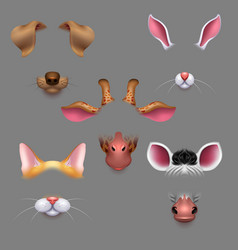 animal ears and noses selfie photo filters vector image