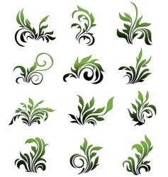 Green floral elements curled leafs vector