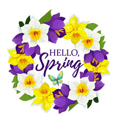 hello spring daffodil flowers floral poster vector image