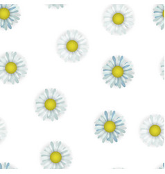 Seamless pattern with camomile floral textile vector