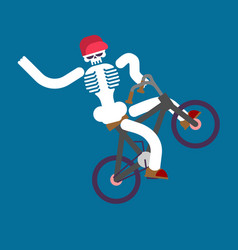 Skeleton on bicycle skull and bmx boy skeletons vector