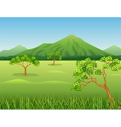 Cartoon of Beautiful jungle background vector image vector image
