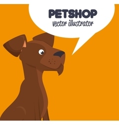 Pet shop brown doggy and bubble speech design vector