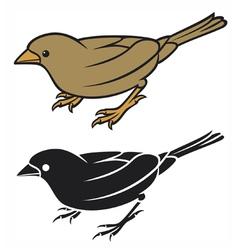 sparrow - small bird vector image vector image
