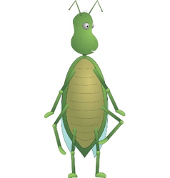 Green Insect Max vector image vector image