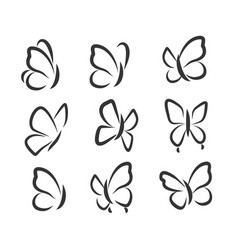 butterflies icons vector image