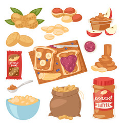peanut groundnut butter or peanut paste on vector image