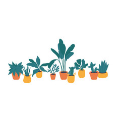 Plants in pots collection vector