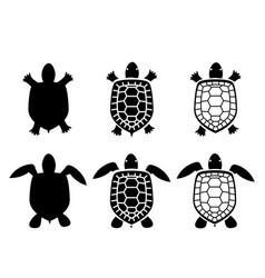 Set of turtle and tortoise iconstop view vector