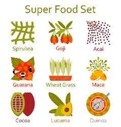 Super food icons set vector image
