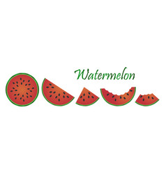 watermelon fruit isolated on white background vector image