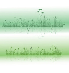 grass and dragonflies vector image