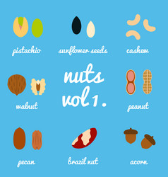 vol 1 nuts and seeds icon set vector image