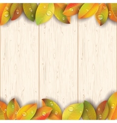 Wooden texture decorated by autumn leaves vector image