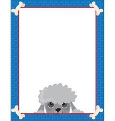 poodle frame vector image
