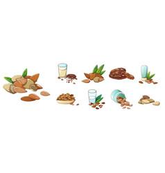 almond icons set cartoon style vector image