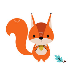 Cute red squirrel with bushy tail holding acorn vector