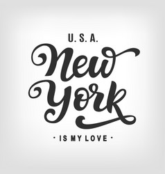 new york city typography with modern calligraphy vector image