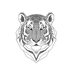 Tiger head isolated on white background wild vector