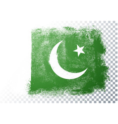 vintage grunge texture flag pakistan vector image