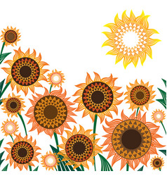 yellow and orange sunflowers vector image