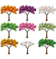 Cartoon of beautiful colorful tree vector image vector image