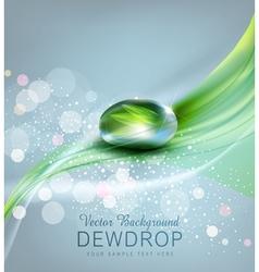 drop of dew and reflection sheet in dew drop vector image vector image