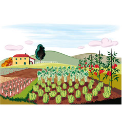 Agricultural landscape cultivated with vegetables vector