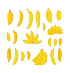 delicious hand drawn food yellow bananas set vector image