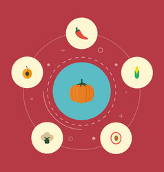 Flat icons broccoli litchi gourd and other vector