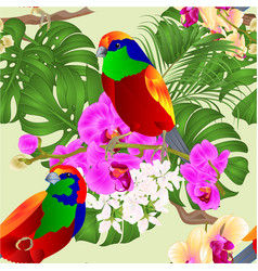 seamless texture tropical orchids and tropical vector image