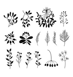 set black and white silhouettes plants vector image