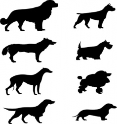 dogs silhouette vector image