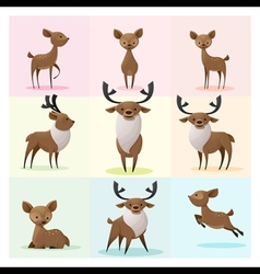 Set of Deer family vector image vector image