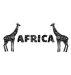 africa banner with patterned giraffes black and vector image