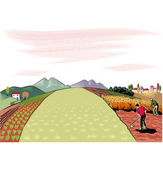 Agricultural landscape cultivated vector