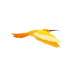 Gorgeous tropical hummingbird with bright yellow vector