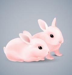 Bunnies vector image